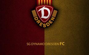 Picture wallpaper, sport, logo, football, Bundesliga, SG Dynamo Dresden