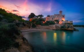 Picture trees, lights, castle, rocks, shore, the evening, pond