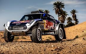 Picture Sand, Auto, Mini, Sport, Machine, Car, 300, Rally, Dakar, Dakar, Rally, Buggy, Buggy, X-Raid Team, …