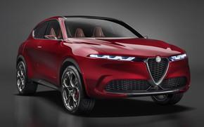 Picture Concept, Alfa Romeo, Tonal