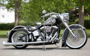 Picture Harley-Davidson, Custom, Motorcycle