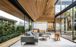 Picture design, furniture, dog, the room, The Roof House