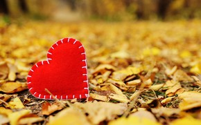 Picture autumn, leaves, love, Park, heart, yellow, love, heart, yellow, park, autumn, leaves, romantic