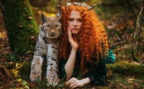 Picture autumn, girl, nature, animal, predator, red, lynx, curls, Александра Савенкова