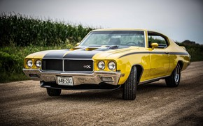 Picture Muscle, Car, Classic, Yellow, GSX, Retro, Buick, Buick GSX