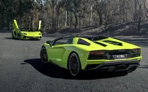 Picture Roadster, Lamborghini, pair, supercar, Aventador S, 2019