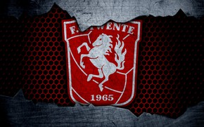 Picture wallpaper, sport, logo, football, Twente