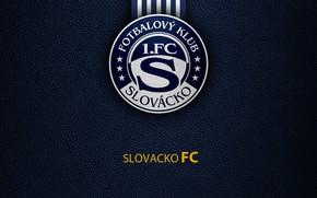 Picture wallpaper, sport, logo, football, Slovacko