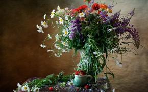 Picture Maki, chamomile, bouquet, strawberry, Lupin