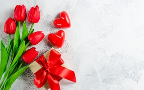 Picture love, hearts, tulips, Valentine's day