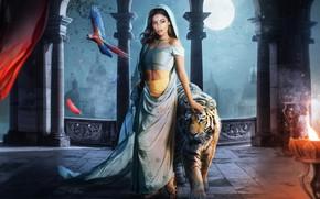 Picture Girl, Tiger, The moon, Fantasy, Art, Art, Jasmine, Aladdin, Jasmine, Rajah, Raja, Character, Hosne Qanadelo, …