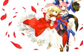 Picture girls, the saber, Fate / Grand Order, The destiny of a great campaign