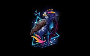 Picture bird, art, black background