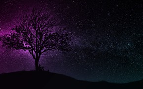 Picture dark, wallpaper, black, art, tree, man, hill, purple, silhouette, starry sky, miscellaneous, 4k uhd background