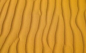 Picture sand, line, desert, texture