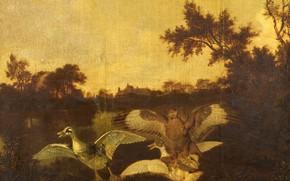 Picture birds, oil, picture, Канюк и Две Утки, Дирк Вийнтрак, 1678, Dirck Wijntrack