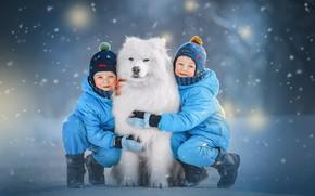Picture winter, snow, children, animal, dog, dog, Samoyed, Ксения Лысенкова