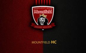 Picture wallpaper, sport, logo, hockey, Mountfield