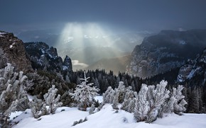 Picture winter, forest, rays, snow, mountains, Romania