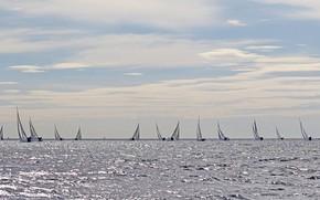 Picture sea, sport, yachts, sails, regatta