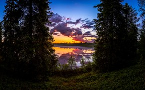 Picture forest, sunset, lake