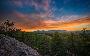 Picture forest, trees, sunset, Colorado, Colorado, National forest Roosevelt, Roosevelt National Forest