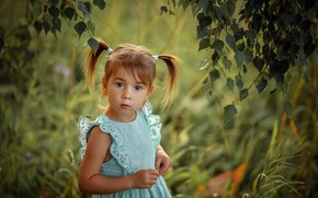 Picture summer, grass, look, leaves, branches, nature, surprise, dress, girl, birch, baby, child, tails, Svetlana Shelemeteva