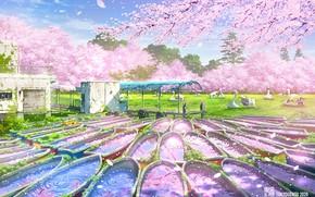 Picture Park, Sakura, Tokyo, flowering, abandoned