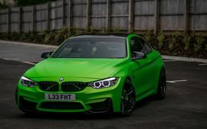 Picture BMW, Green, matte, wrap