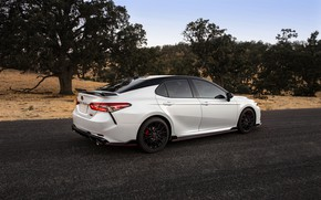 Picture road, white, Toyota, sedan, TRD, Camry, 2020