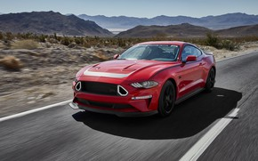Picture Mustang, Ford, 2019, Series 1 Mustang RTR