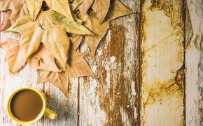 Picture autumn, leaves, background, tree, coffee, Cup, wood, background, autumn, leaves, cup, coffee, maple