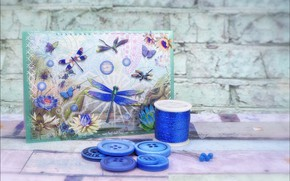 Picture picture, dragonfly, thread, handmade, pugovicy