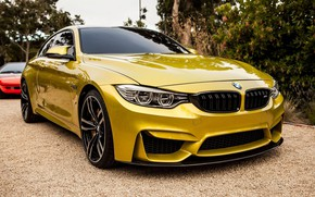 Picture coupe, sports car, Gold, BMW M4