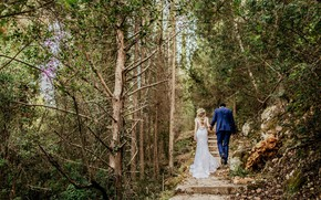 Picture girl, nature, photo, dress, male, lovers, the bride