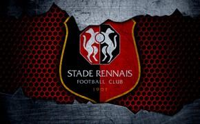 Picture wallpaper, sport, logo, football, Rennes