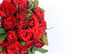 Picture flowers, background, roses, bouquet, beautiful
