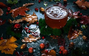 Picture autumn, leaves, water, berries, tea, moss, Cup, bokeh, apples, acorns