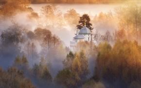 Picture autumn, trees, landscape, nature, fog, Church, the dome, Istra, Agoranov Alex, Alexey Bagaryakov