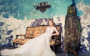 Picture look, girl, pose, room, sofa, wall, bird, white, paint, candles, dress, peacock, Asian, sitting, the …