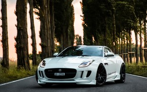 Picture Jaguar, GTR, R400, Performance, F Type, Knight
