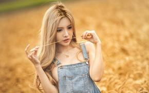 Picture girl, Model, field, photo, lips, blonde, asian, wheat, necklace, portrait, mouth, lipstick, dark eyes, depth …
