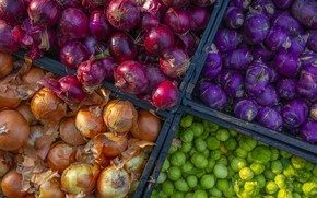 Picture harvest, bow, vegetables
