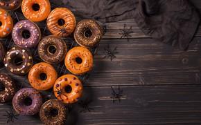 Picture spiders, Halloween, Halloween, donuts, cakes, sweet, glaze