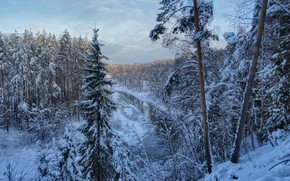 Picture winter, forest, snow, landscape, nature, river, Nerl