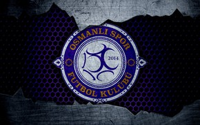 Picture wallpaper, sport, logo, football, Osmanlispor