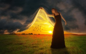 Picture field, the sky, sunset, birds, photoshop, curtain, girl art