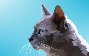Picture cat, background, vector graphics