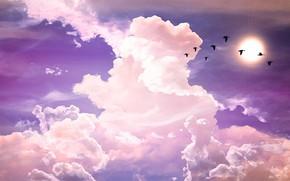 Picture fantasy, sky, pink, cloud, purple