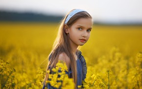 Picture field, summer, look, nature, dress, girl, grass, child, Alexei Batalov